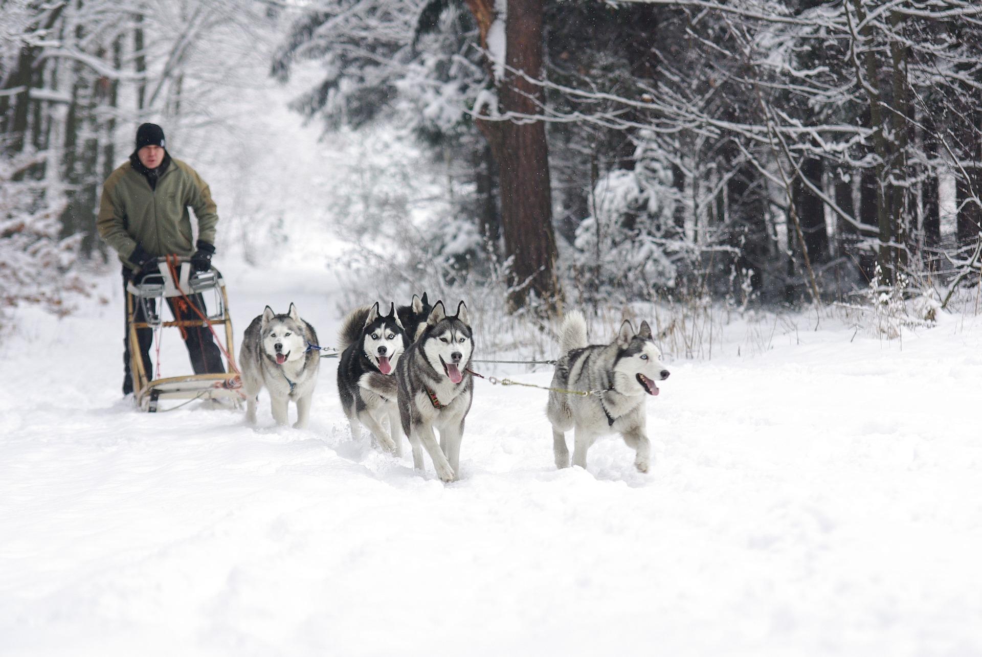 Rovaniemi, Evasione d'Inverno 2021 2022