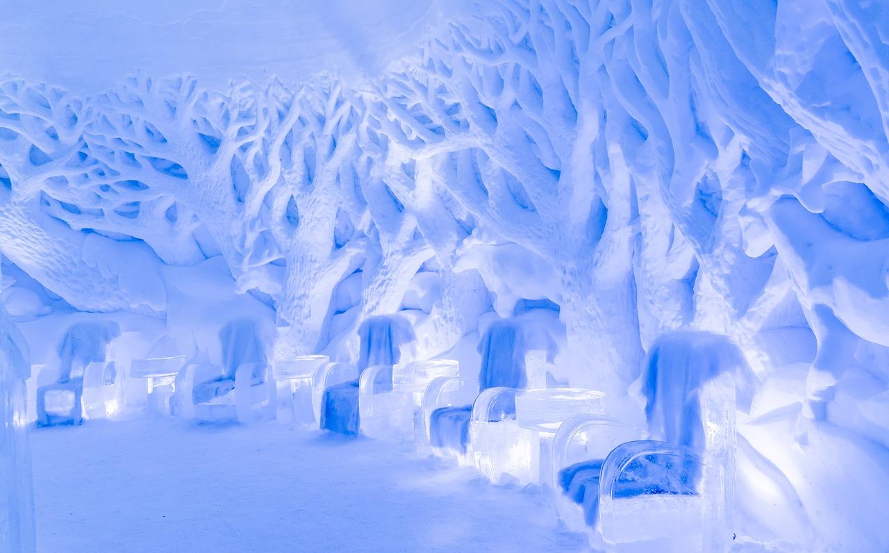 Levi, esperienza polare 2021
